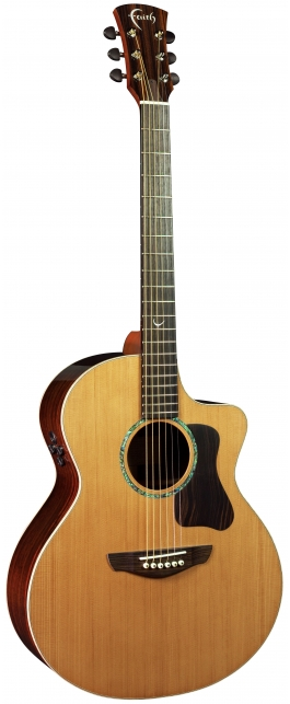 FG2NCE - PJE Legacy Neptune Cut/Electro (2-Piece Rosewood)
