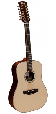 FS12HG - HiGloss Saturn 12 String