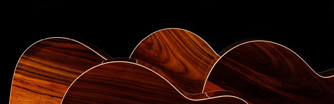 FVHG - HiGloss Venus Cut/Electro - Faith Acoustic Guitars
